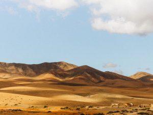 Aluguel de Carros Aeroporto de Fuerteventura